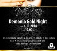 DG_night_plakat